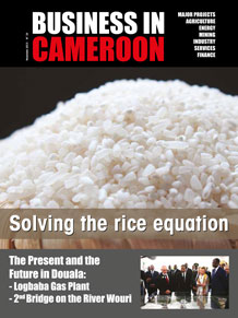 Business in Cameroon n°10