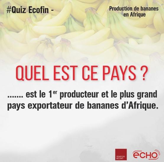 producteur exportateur bananes