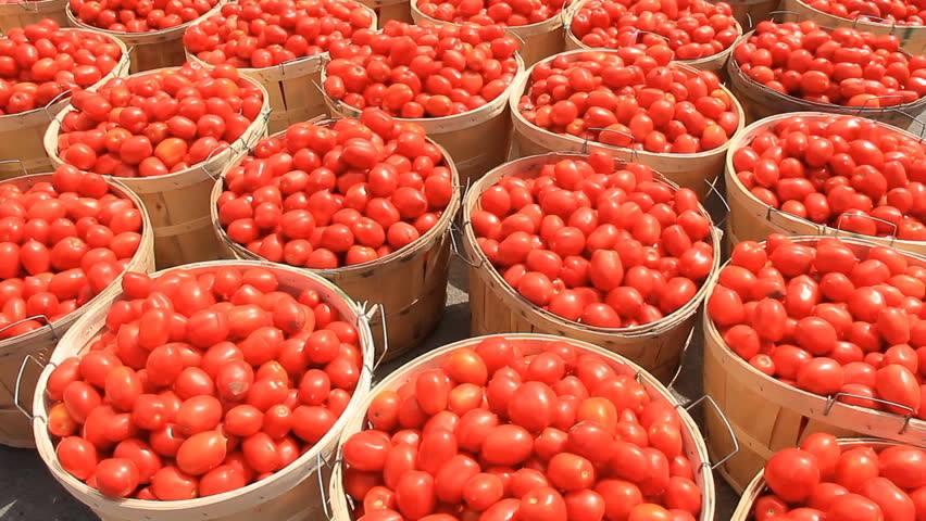 tomates nigeria