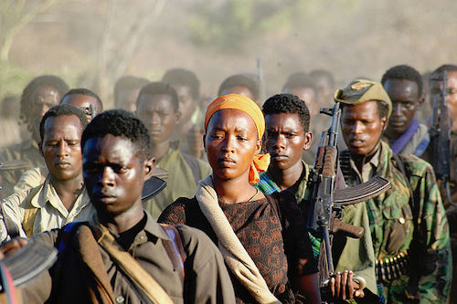 1Oromo Liberation Front rebels