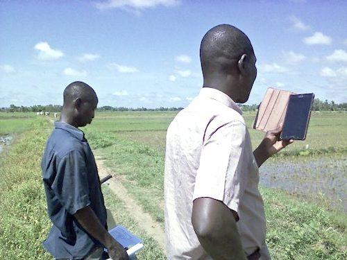 1ConseilAgricole Riz BurkinaFaso